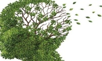 Αλτσχάιμερ: Ο πιο απλός τρόπος να μειώσετε τον κίνδυνο στο μισό