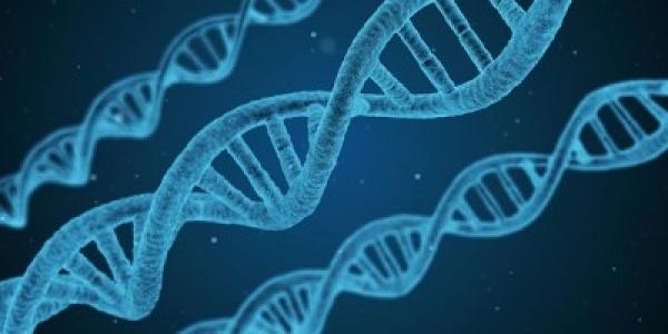 Η Ελλάδα υπέγραψε τη διακήρυξη για τη δημιουργία βάσης δεδομένων για το ανθρώπινο γονιδίωμα