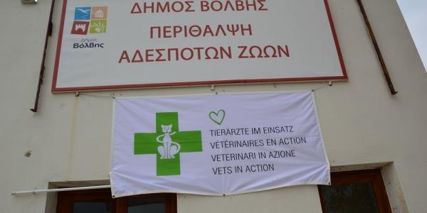 Βόλβη: Ολοκληρώθηκαν οι δράσεις περίθαλψης αδέσποτων ζώων