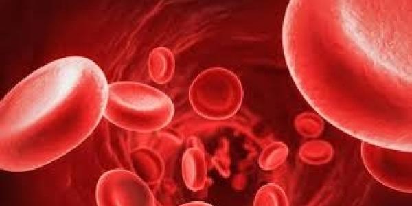 Mεσογειακή Aναιμία: Θεραπεία μειώνει την ανάγκη για μετάγγιση αίματος