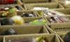 Συλλογή τροφίμων και ειδών πρώτης ανάγκης
