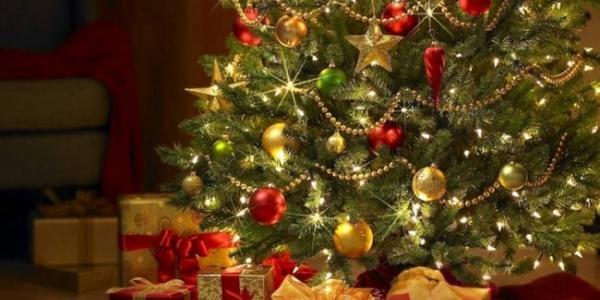 Φωταγωγείται το Χριστουγεννιάτικο Δέντρο στην Πολίχνη