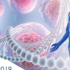 Νεότερα δεδομένα στη Βιολογία και τις Ιατρικές Εφαρμογές των Βλαστοκυττάρων