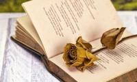 Δήμος Κορδελιού - Ευόσμου: Κάλεσμα σε διαγωνισμό Ποίησης και Φωτογραφίας