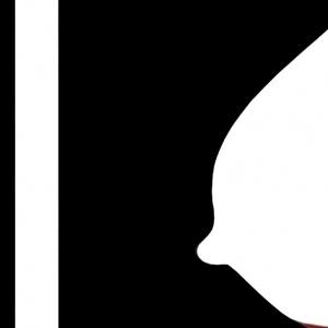 Εκθεση της Anese Cho «Fragmentation» στο Τελλόγλειο