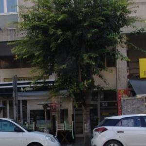 Ζημίες σε τέσσερα  αυτοκίνητα από πτώση δέντρου στο κέντρο