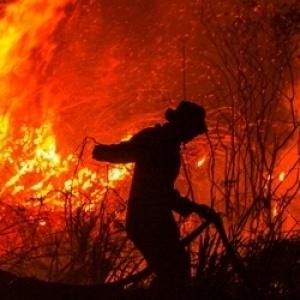 Νεκροί, τραυματίες και αγνοούμενοι από φωτιές στην Αυστραλία
