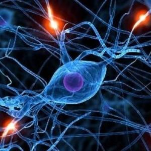 Δημιουργήθηκαν οι πρώτοι τεχνητοί νευρώνες