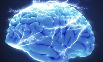 Ο αυτοκανιβαλισμός των μιτοχονδρίων οδηγεί σε νευροεκφυλισμό