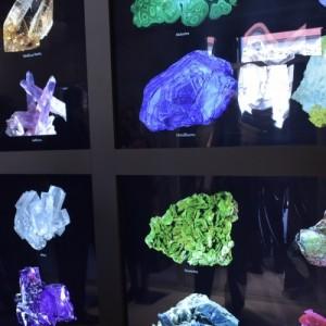 Αναστολή εκδηλώσεων από το Αριστοτέλειο Μουσείο Φυσικής Ιστορίας