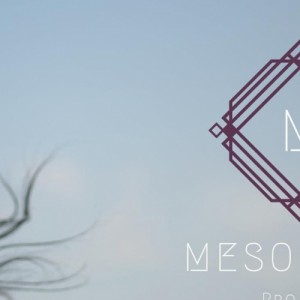 Mesogeios Live @ Apoplous All Day Beach Bar