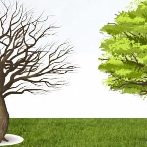 7ο Περιβαλλοντικό Συνέδριο Μακεδονίας για την προστασία του περιβάλλοντος και την περιβαλλοντική εκπαίδευση