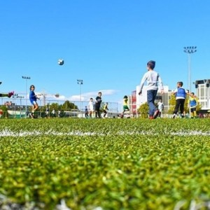 Αναβάλλεται η έναρξη  των Αθλητικών Ακαδημιών ΑΠΘ