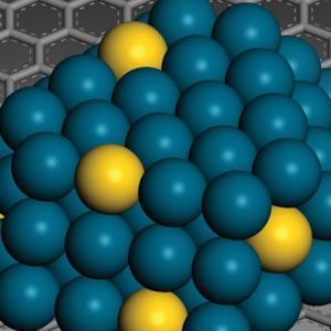 Παραγωγή νανοϋλικών και βιοπολυμερών από φυτική βιομάζα