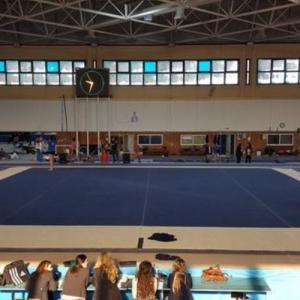 Στο Εθνικό Γυμναστήριο Μίκρας  εκπαιδευτικό προπονητικό καμπ ενόργανης  γυμναστικής