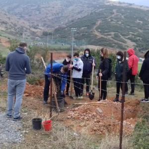Δενδροφύτευση πραγματοποίησαν  κάτοικοι και εθελοντές στο Τριάδι