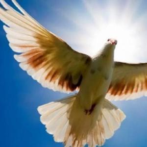 Η αργία του Αγίου Πνεύματος