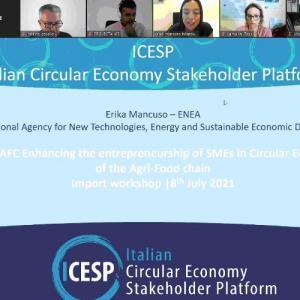 Εισαγωγικό εργαστήριο σχετικά με το ευρωπαϊκό έργο «SinCE-AFC»