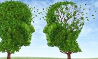 Αλτσχάιμερ: Νέα εξέταση αίματος προβλέπει την έναρξη της νόσου