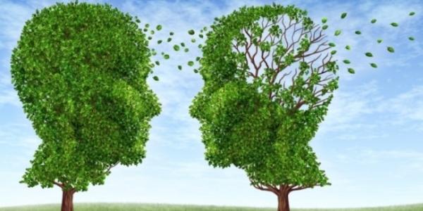 Ολοκληρωμένο σύστημα Νοητικής και Σωματικής ενδυνάμωσης από το ΑΠΘ