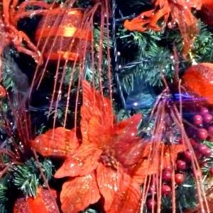 Γιορτινός κόσμος: Χριστουγεννιάτικο φεστιβάλ της Νεολαίας του Αγίου Αντωνίου